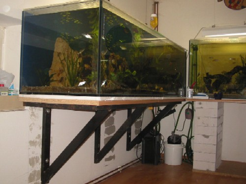 aquarium wackelt bei jedem schritt biotop forum. Black Bedroom Furniture Sets. Home Design Ideas